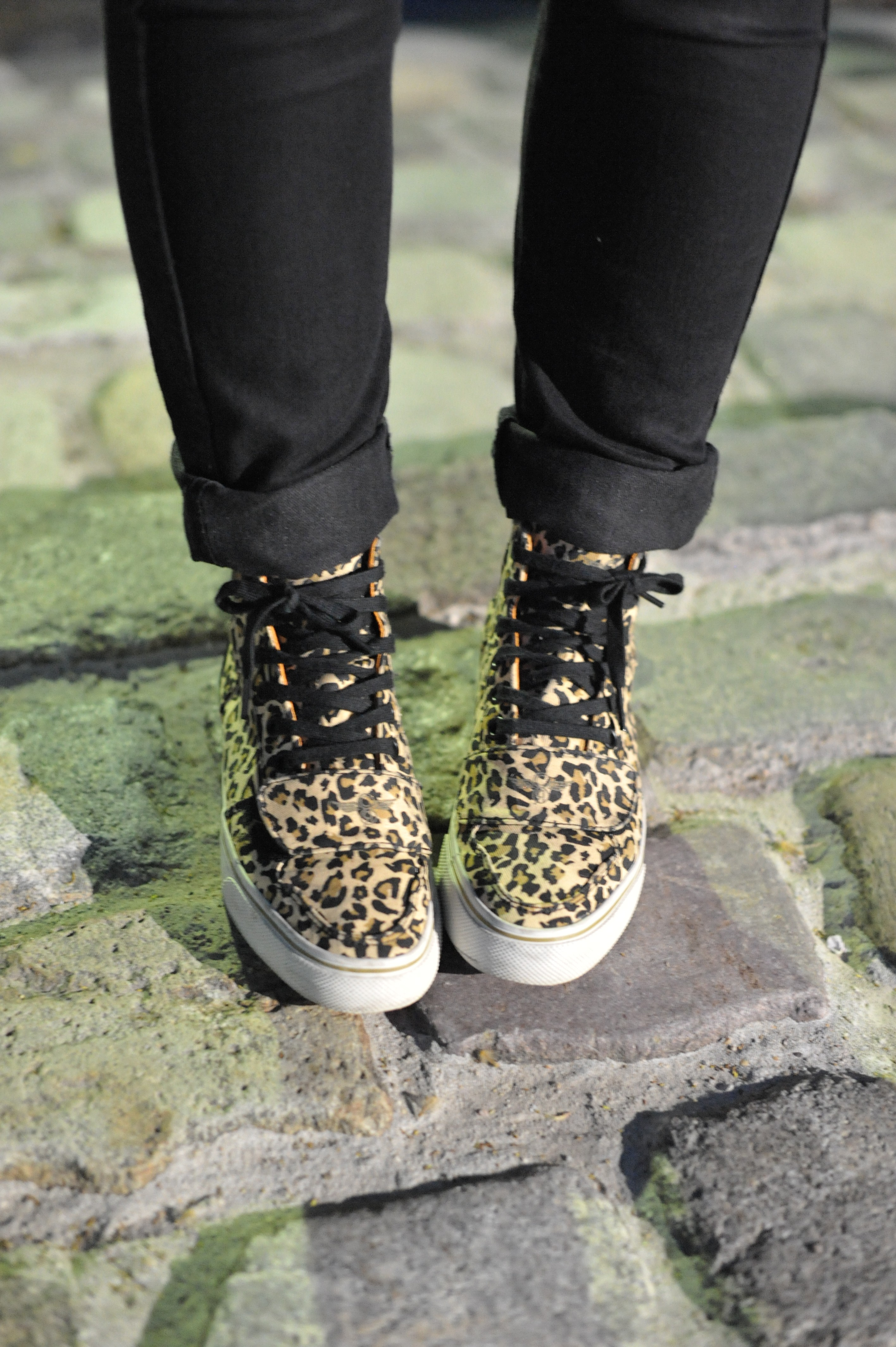 sneakers baskets leopard